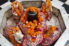 Shiv_Parivar